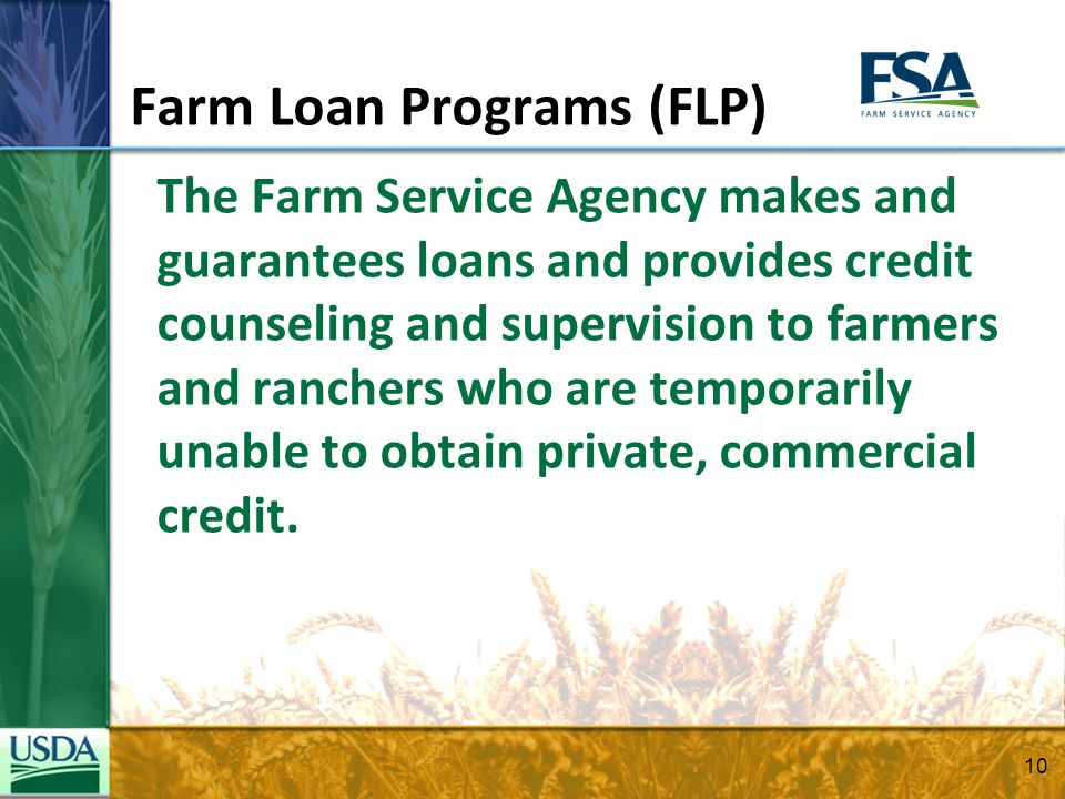 Farm Loan Programs (FLP) The Farm Service Agency makes and guarantees loans and provides credit counseling and supervision to farmers and ranchers who