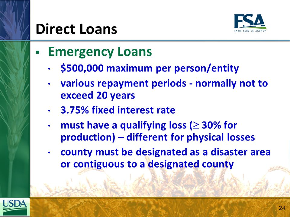 Direct Loans Emergency Loans $500,000 maximum per person/entity various repayment periods - normally not to exceed 20 years 3.75% fixed interest rate