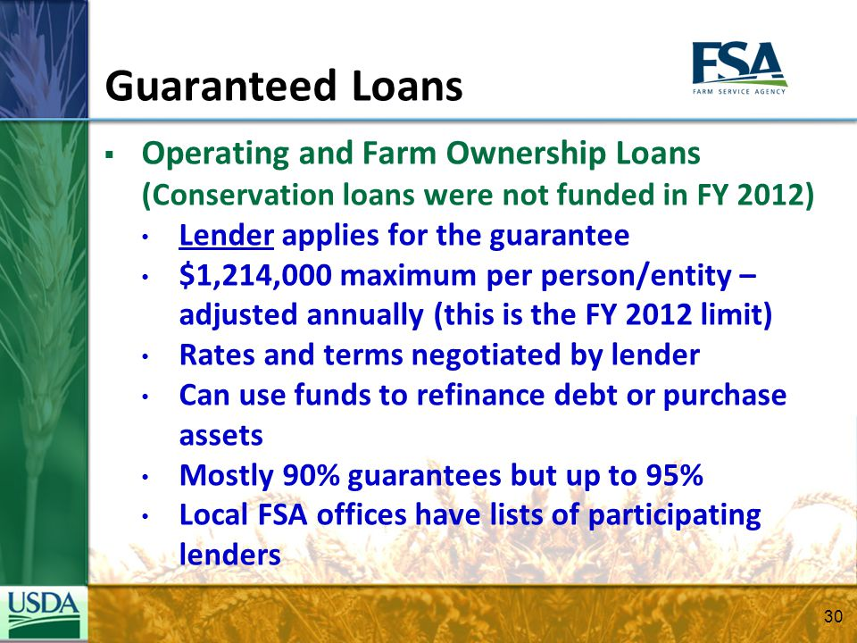 Guaranteed Loans Operating and Farm Ownership Loans (Conservation loans were not funded in FY 2012) Lender applies for the guarantee $1,214,000 maximu
