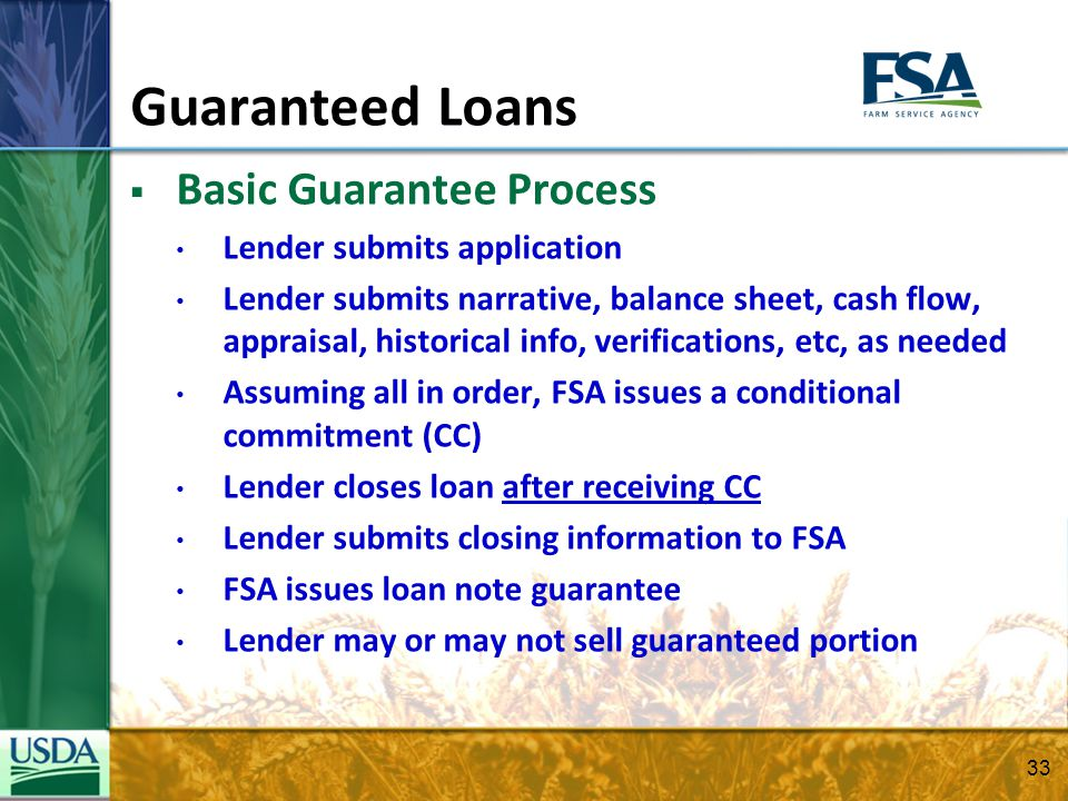 Guaranteed Loans Basic Guarantee Process Lender submits application Lender submits narrative, balance sheet, cash flow, appraisal, historical info, ve