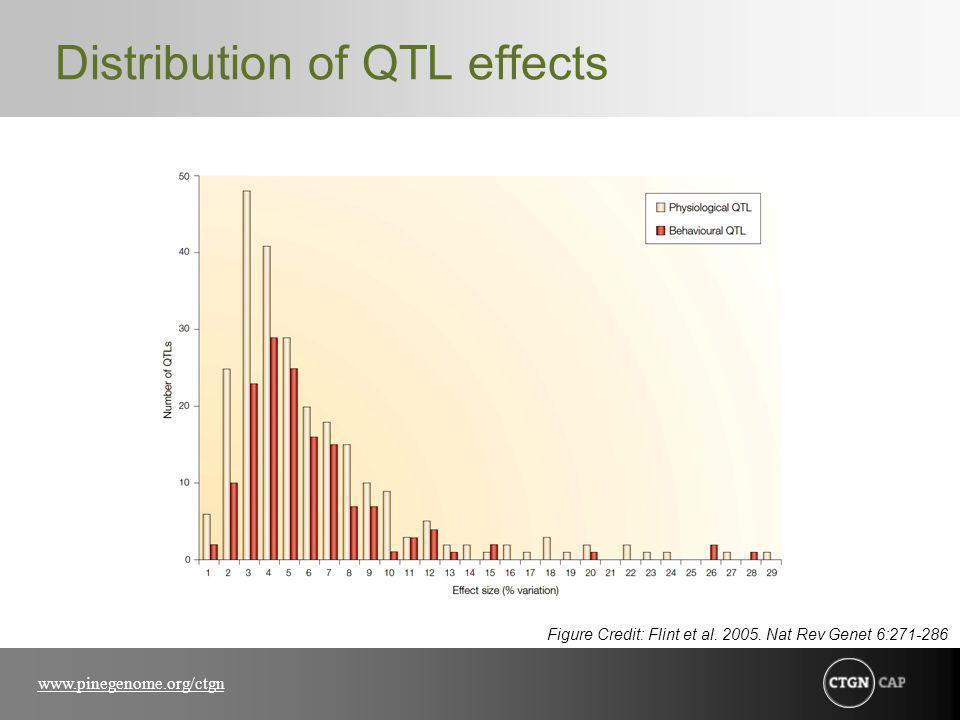 www.pinegenome.org/ctgn Distribution of QTL effects Figure Credit: Flint et al.