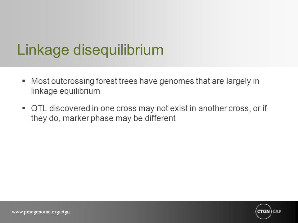 www.pinegenome.org/ctgn Linkage disequilibrium Most outcrossing forest trees have genomes that are largely in linkage equilibrium QTL discovered in one cross may not exist in another cross, or if they do, marker phase may be different