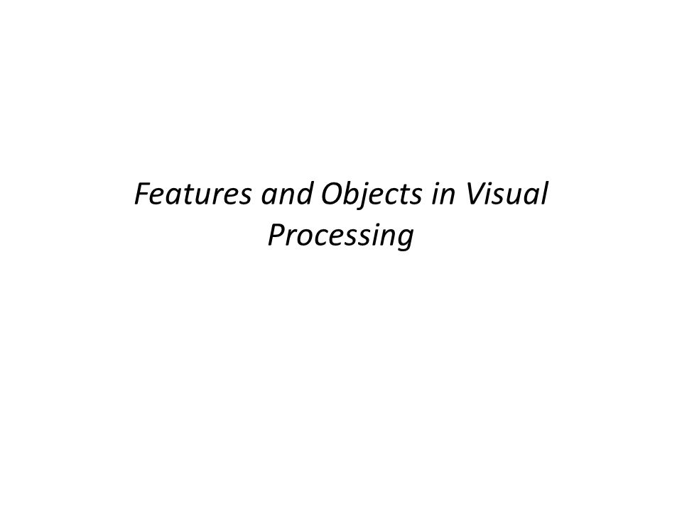 Features and Objects in Visual Processing