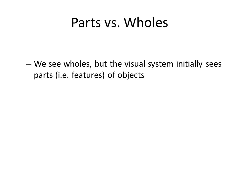 Parts vs. Wholes – We see wholes, but the visual system initially sees parts (i.e.