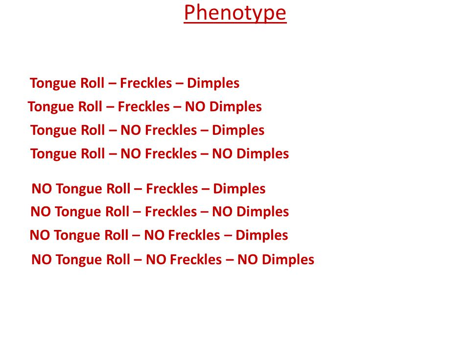 Phenotype Tongue Roll – Freckles – Dimples 48/64 Tongue Roll – Freckles – NO Dimples 16/64 Tongue Roll – NO Freckles – Dimples 0/64 Tongue Roll – NO Freckles – NO Dimples 0/64 NO Tongue Roll – Freckles – Dimples 0/64 NO Tongue Roll – Freckles – NO Dimples 0/64 NO Tongue Roll – NO Freckles – NO Dimples 0/64 NO Tongue Roll – NO Freckles – Dimples 0/64