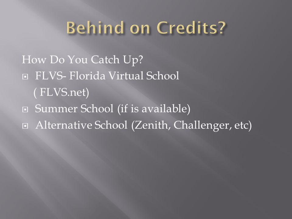 Passing grades: A, B, C, D earn a 1.00 credit per school year A= 90% -100% 1.00 credit B= 80%-89% 1.00 credit C= 70%-79% 1.00 credit D= 60%-69% 1.00 credit F= 59% & below = 0 credit Parent Internet Viewer.