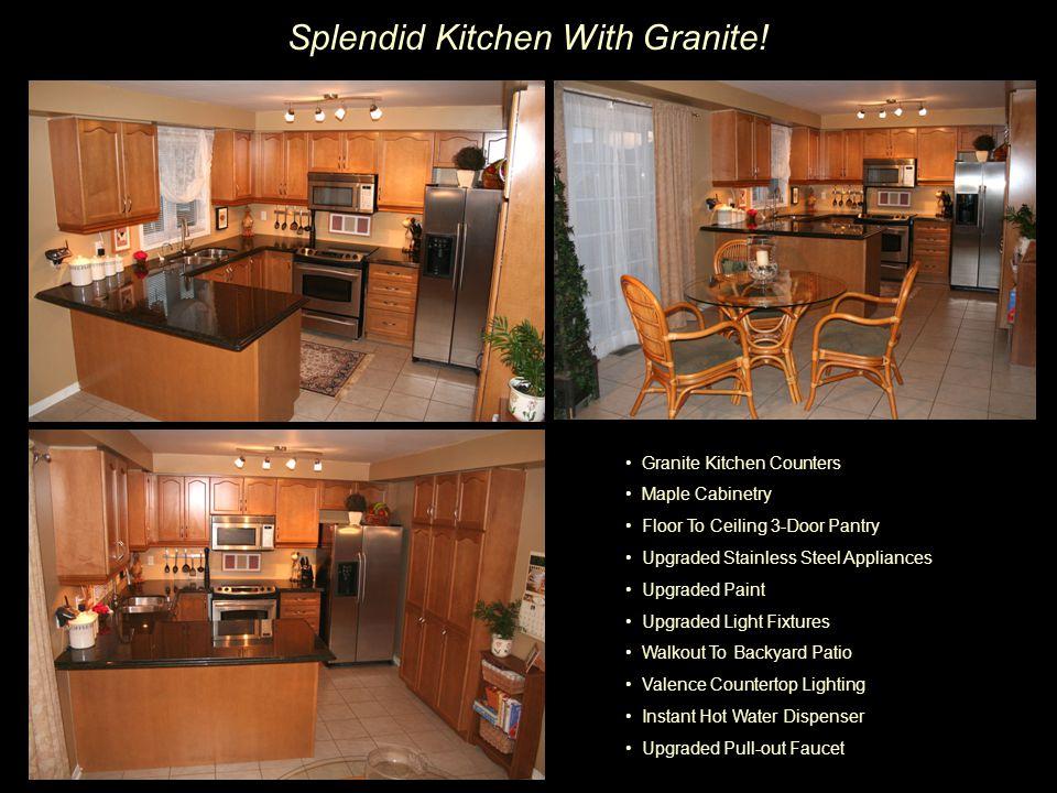 Splendid Kitchen With Granite.