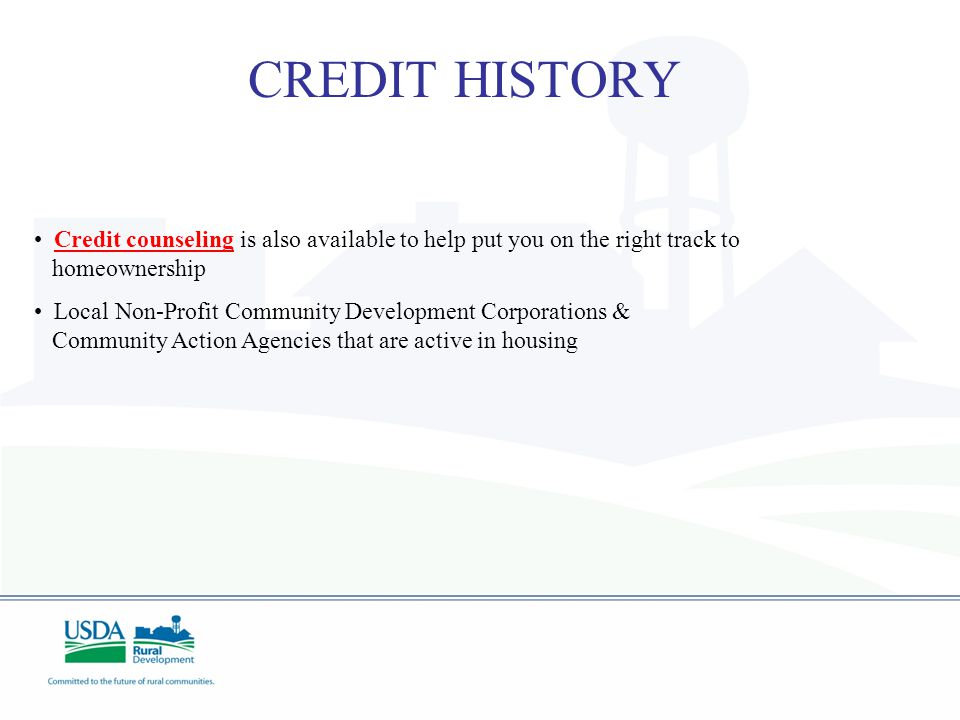 CREDIT HISTORY Credit Waivers Rural Development may consider mitigating circumstances to establish the borrowers intent for good credit when the appli