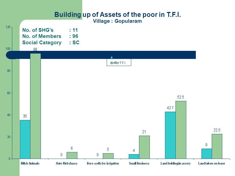 Building up of Assets of the poor in T.F.I. Village : Gopularam No.