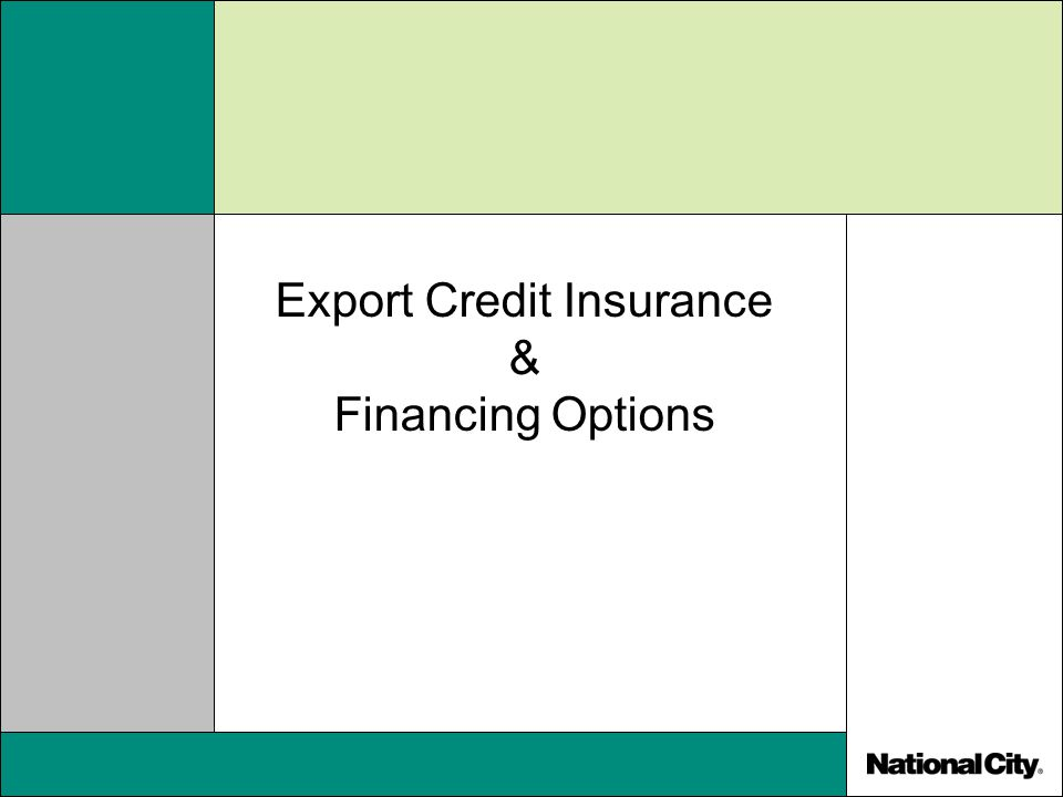 Export Credit Insurance & Financing Options