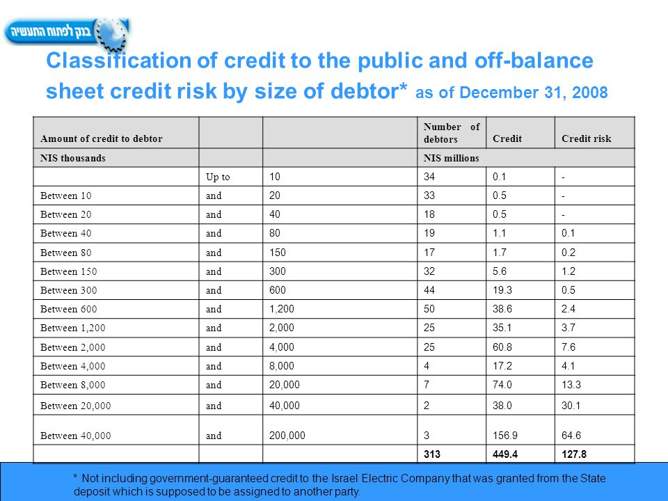 Classification of credit to the public and off-balance sheet credit risk by size of debtor* as of December 31, 2008 * Not including government-guaranteed credit to the Israel Electric Company that was granted from the State deposit which is supposed to be assigned to another party.