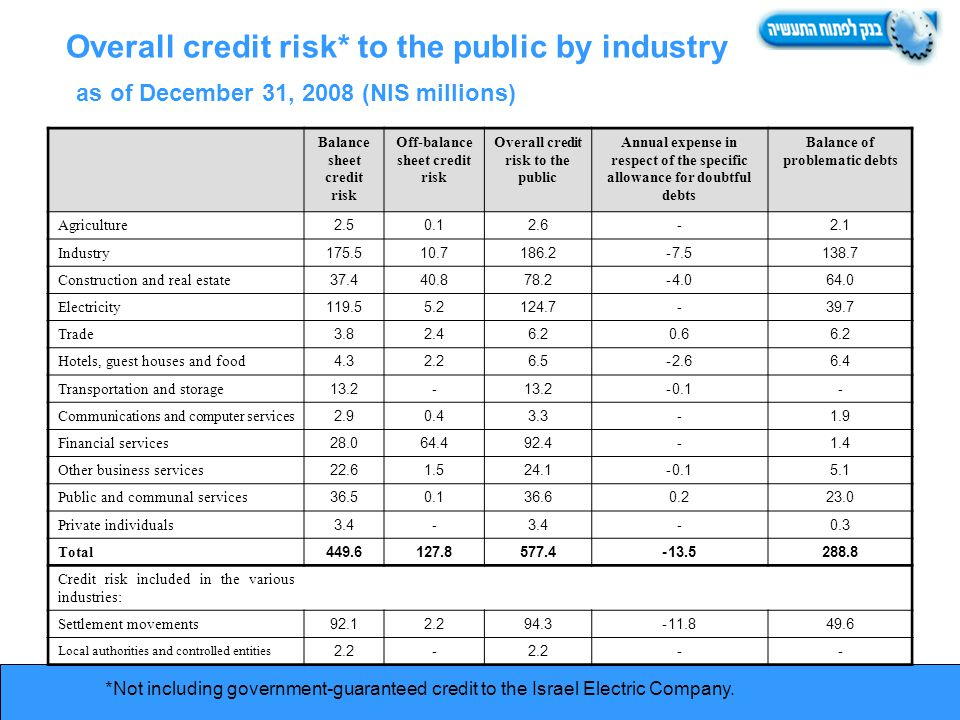 Overall credit risk* to the public by industry as of December 31, 2008 (NIS millions) *Not including government-guaranteed credit to the Israel Electric Company.