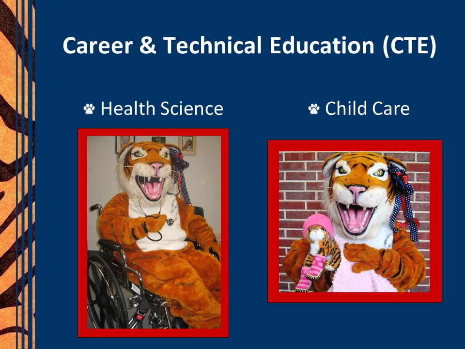 Career & Technical Education (CTE) Health Science Child Care