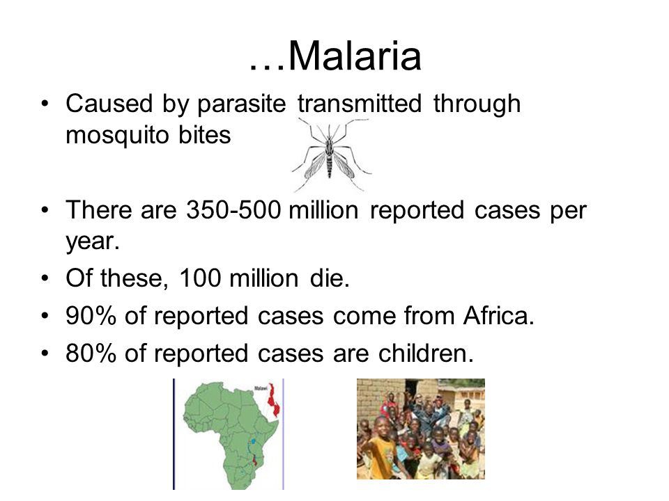 …Malaria Caused by parasite transmitted through mosquito bites There are 350-500 million reported cases per year.