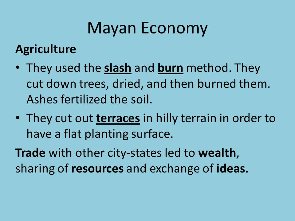 Mayan Economy Agriculture They used the slash and burn method. They cut down trees, dried, and then burned them. Ashes fertilized the soil. They cut o