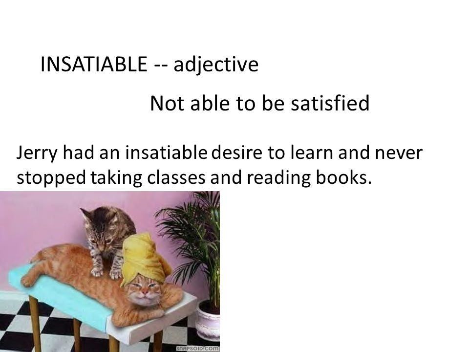 INSATIABLE -- adjective Not able to be satisfied Jerry had an insatiable desire to learn and never stopped taking classes and reading books.
