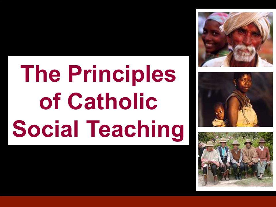 The Principles of Catholic Social Teaching