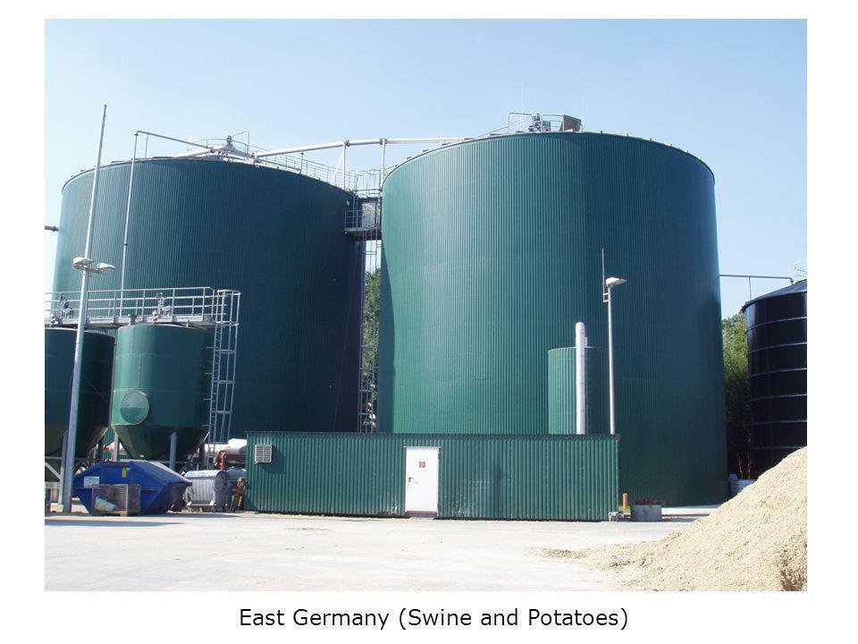 East Germany (Swine and Potatoes)