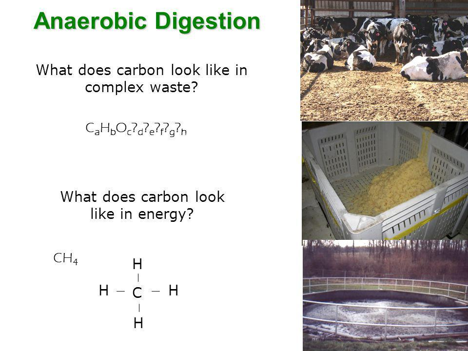 Anaerobic Digestion What does carbon look like in complex waste.