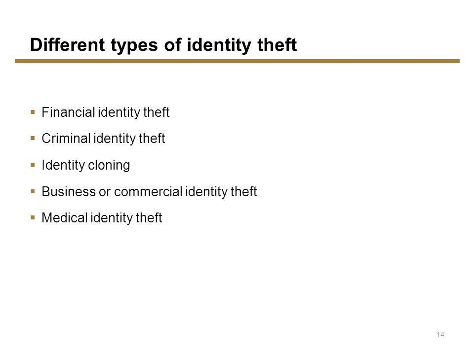 Financial identity theft Criminal identity theft Identity cloning Business or commercial identity theft Medical identity theft Different types of identity theft 14