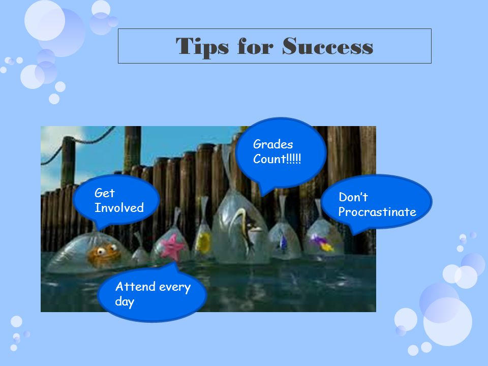 Tips for Success Get Involved Attend every day Grades Count!!!!! Dont Procrastinate