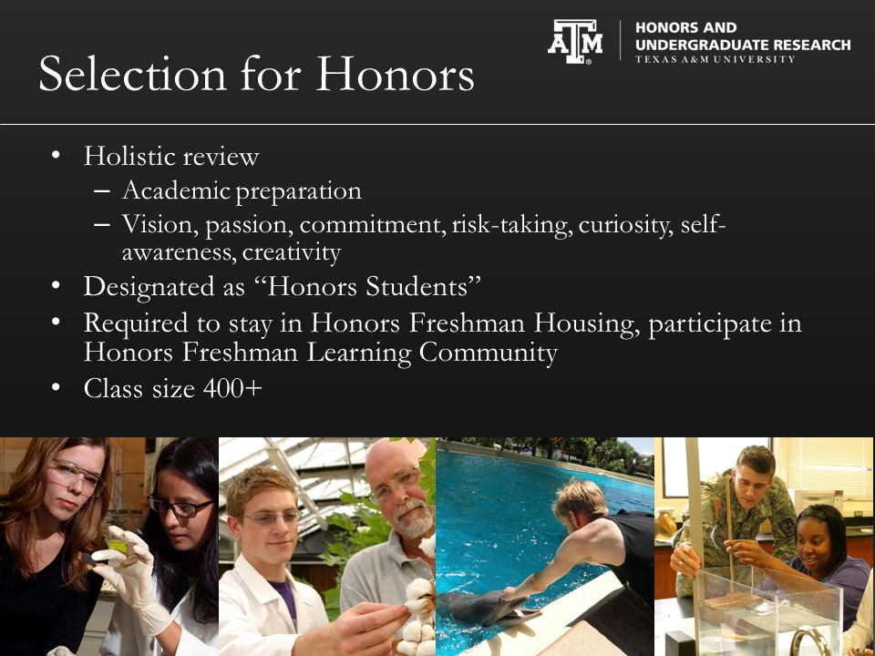 Selection for Honors Holistic review – Academic preparation – Vision, passion, commitment, risk-taking, curiosity, self- awareness, creativity Designated as Honors Students Required to stay in Honors Freshman Housing, participate in Honors Freshman Learning Community Class size 400+