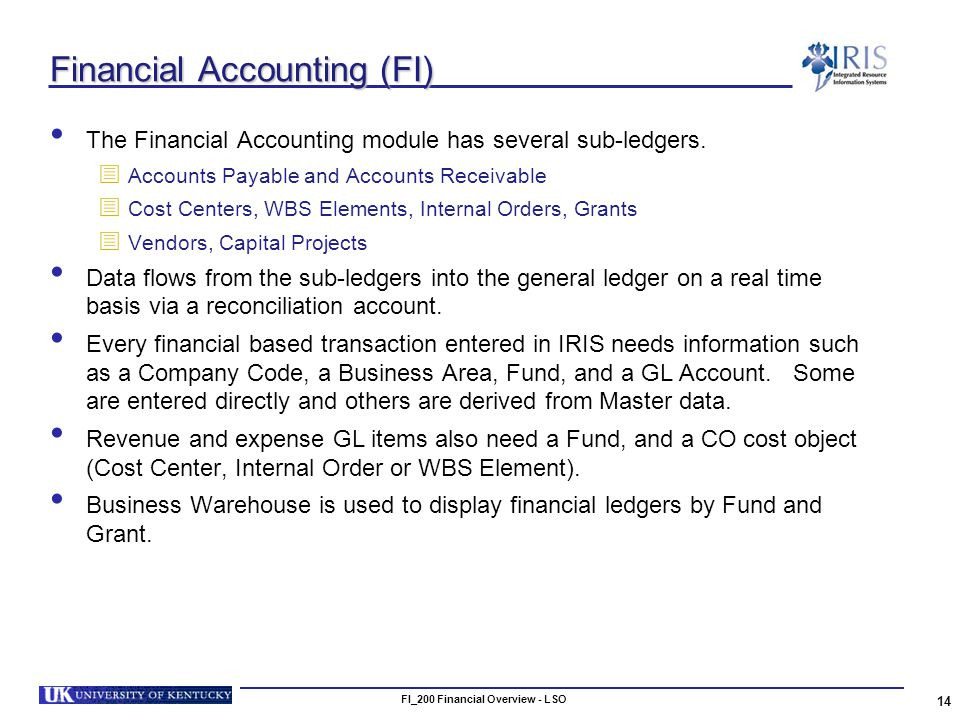 FI_200 Financial Overview - LSO 14 Financial Accounting (FI) The Financial Accounting module has several sub-ledgers.