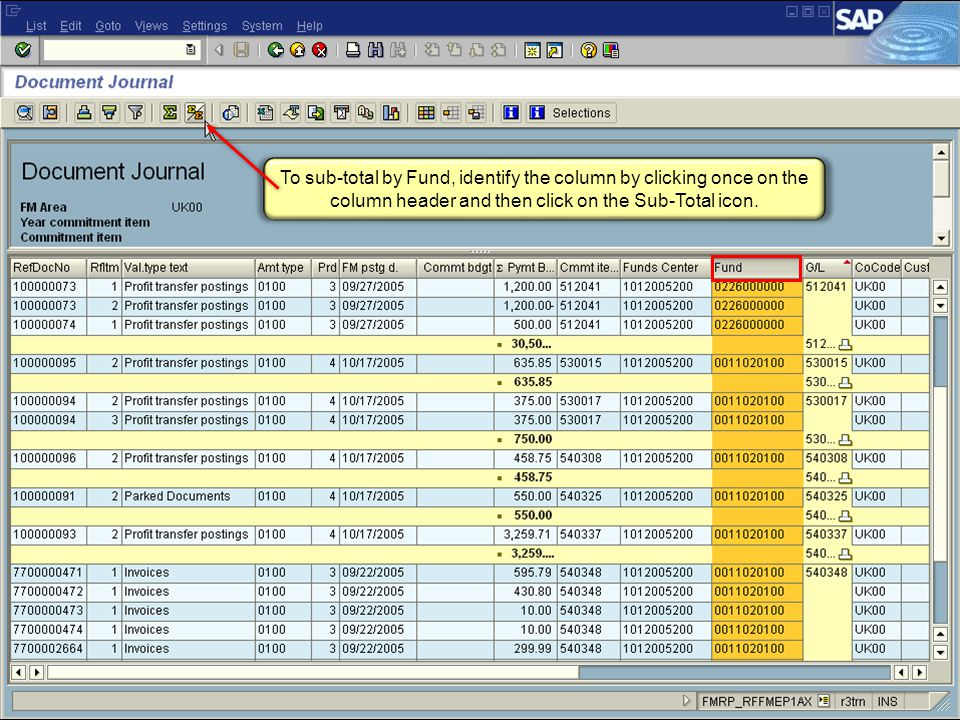 52 FI_200 Financial Overview - LSO To sub-total by Fund, identify the column by clicking once on the column header and then click on the Sub-Total icon.
