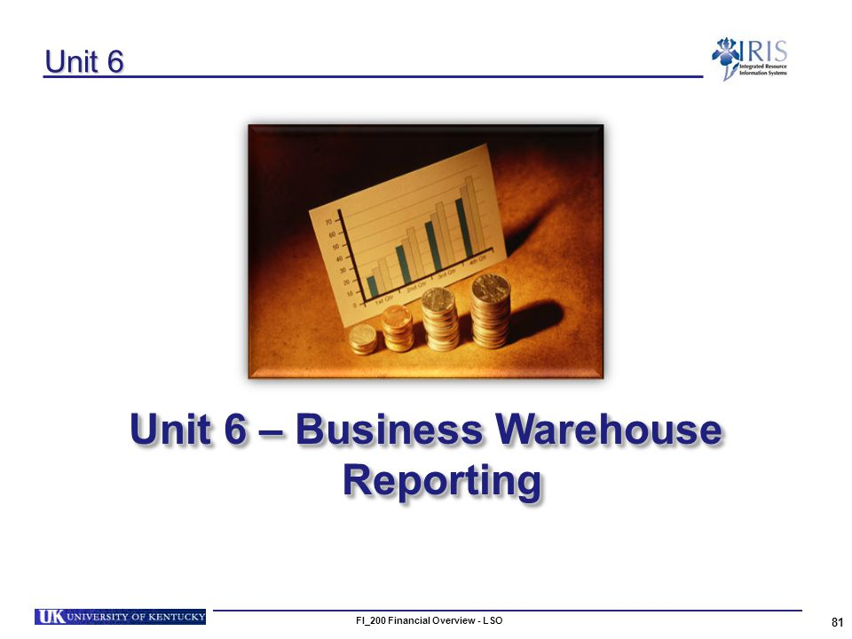 FI_200 Financial Overview - LSO 81 Unit 6 Unit 6 – Business Warehouse Reporting