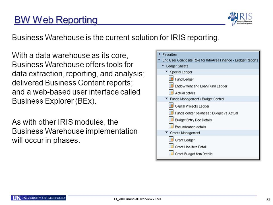FI_200 Financial Overview - LSO 82 BW Web Reporting Business Warehouse is the current solution for IRIS reporting.