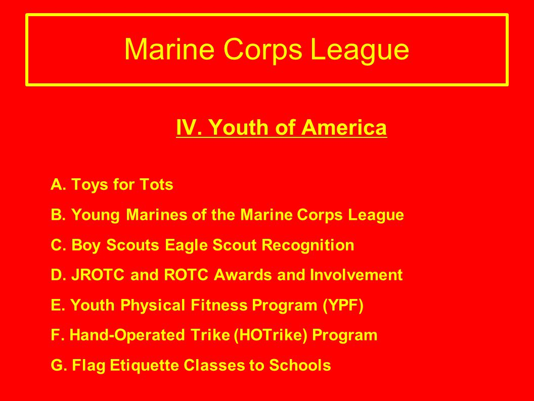 IV. Youth of America A. Toys for Tots B. Young Marines of the Marine Corps League C. Boy Scouts Eagle Scout Recognition D. JROTC and ROTC Awards and I