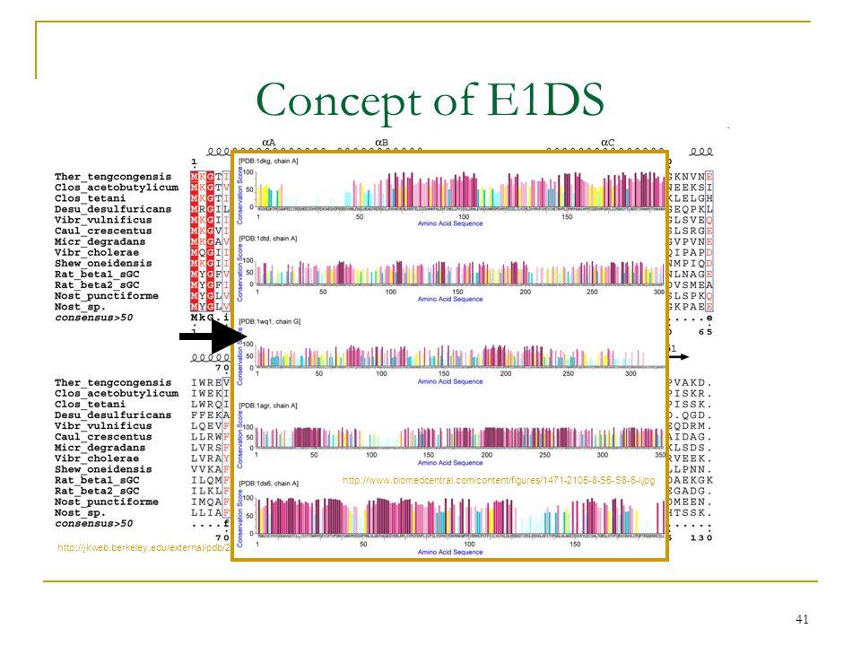 41 Concept of E1DS http://jkweb.berkeley.edu/external/pdb/2004/heme/fig1.jpg http://www.biomedcentral.com/content/figures/1471-2105-8-S5-S8-6-l.jpg