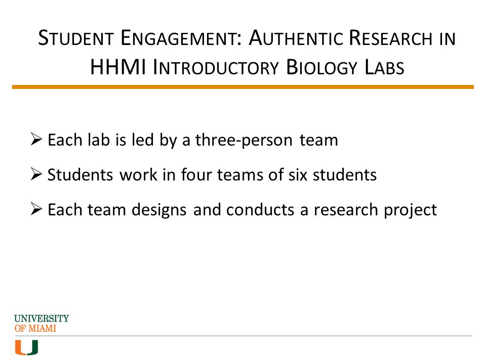 S TUDENT E NGAGEMENT : A UTHENTIC R ESEARCH IN HHMI I NTRODUCTORY B IOLOGY L ABS Each lab is led by a three-person team Students work in four teams of six students Each team designs and conducts a research project
