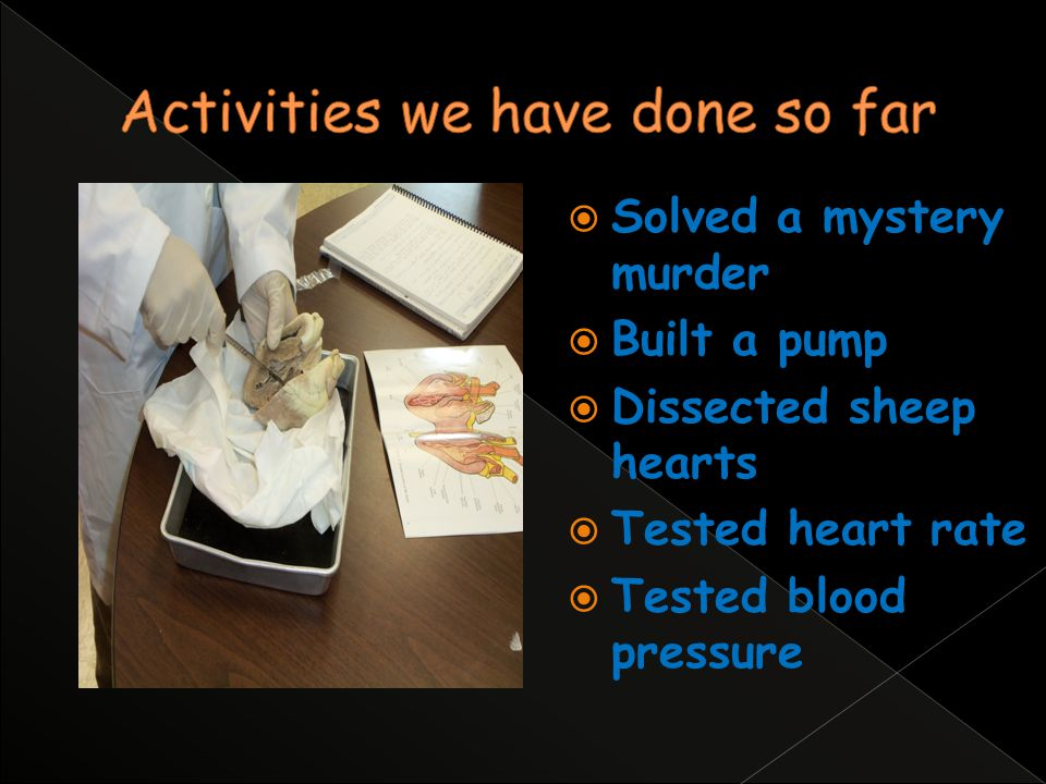Solved a mystery murder Built a pump Dissected sheep hearts Tested heart rate Tested blood pressure