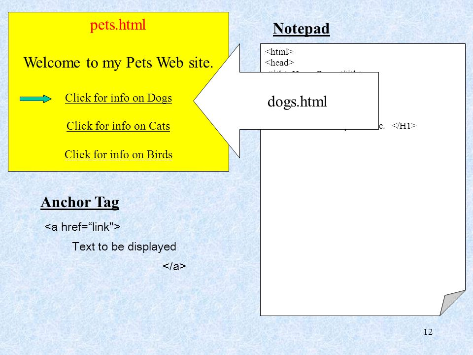 12 pets.html Welcome to my Pets Web site. Click for info on Dogs Click for info on Cats Click for info on Birds Notepad Home Page Welcome to my Web si