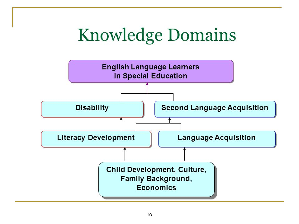 10 Knowledge Domains Literacy Development Language Acquisition English Language Learners in Special Education English Language Learners in Special Education Disability Second Language Acquisition Child Development, Culture, Family Background, Economics