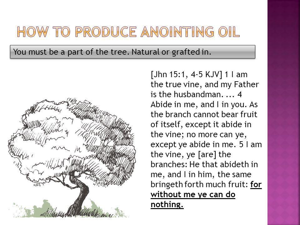 You must be a part of the tree. Natural or grafted in.