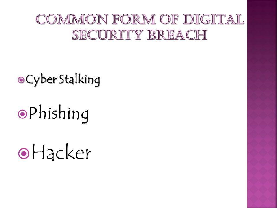 Cyber Stalking Cyber Stalking Phishing Hacker