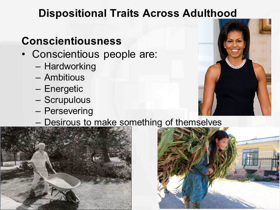 10 of 42 Dispositional Traits Across Adulthood Conscientiousness Conscientious people are: –Hardworking –Ambitious –Energetic –Scrupulous –Persevering –Desirous to make something of themselves
