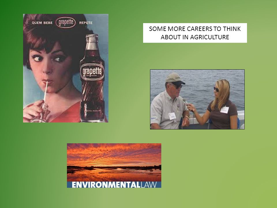 SOME MORE CAREERS TO THINK ABOUT IN AGRICULTURE
