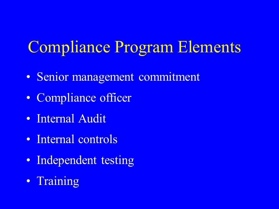 Compliance Program Elements Senior management commitment Compliance officer Internal Audit Internal controls Independent testing Training