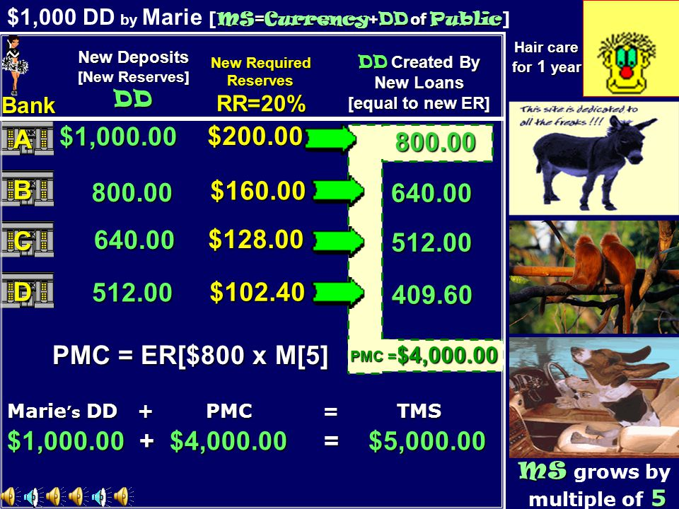 800.00 Two Monkeys A chauffeur dog A chauffeur dog MS = Currency + DD of Public $1,000 DD by Marie [ MS = Currency + DD of Public ] MS MS grows by 5 multiple of 5 640.00 512.00 409.60 $1,000.00 800.00 640.00 512.00 Marie s DD + PMC = TMS $200.00 $160.00 $128.00 $102.40 $1,000.00 + $4,000.00 = $5,000.00 $4,000.00 PMC = ER[$800 x M[5] PMC = New Deposits [New Reserves] DD New Required ReservesRR=20% DD Created By New Loans [equal to new ER] Bank A B C D Hair care for 1 year Purchase of a donkey 800.00