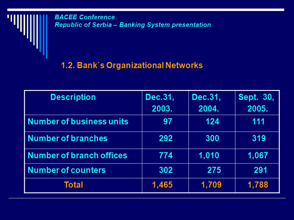 1.2. Bank`s Organizational Networks DescriptionDec.31,