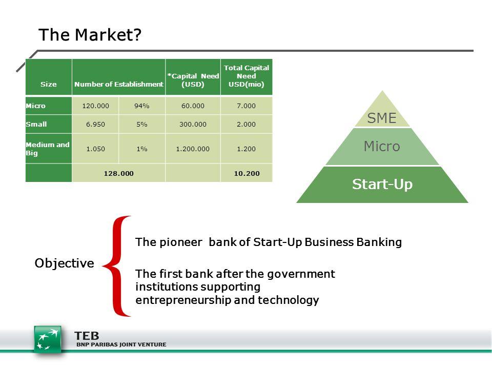 SizeNumber of Establishment *Capital Need (USD) Total Capital Need USD(mio) Micro120.00094%60.0007.000 Small6.9505%300.0002.000 Medium and Big 1.0501%1.200.0001.200 128.000 10.200 The Market.