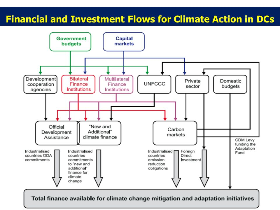 Financial and Investment Flows for Climate Action in DCs