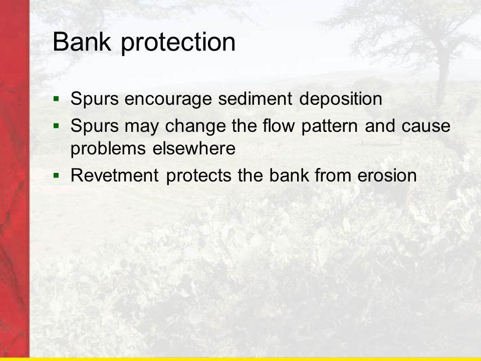 Bank protection Spurs encourage sediment deposition Spurs may change the flow pattern and cause problems elsewhere Revetment protects the bank from erosion