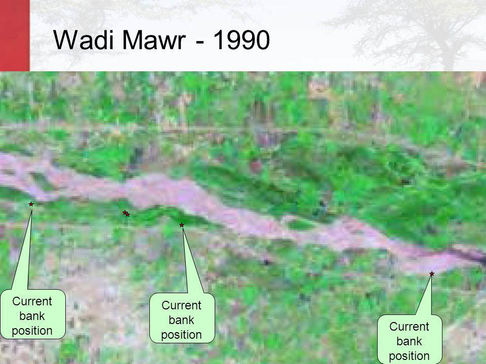 Wadi Mawr - 1990 Wadi in 1990 Wadi in 2000 Current bank position