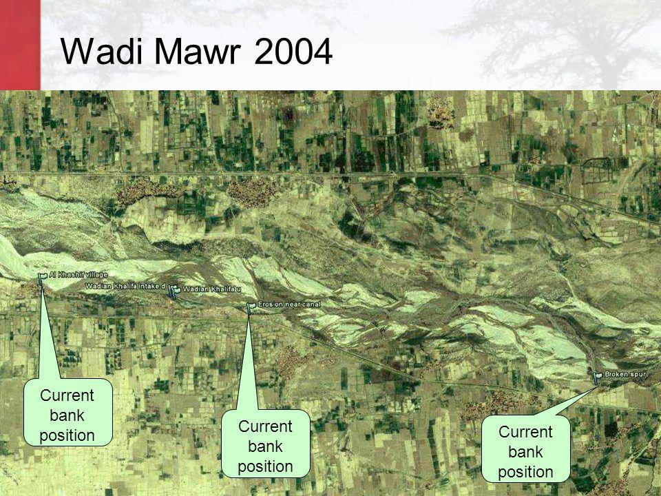 Wadi Mawr 2004 Current bank position