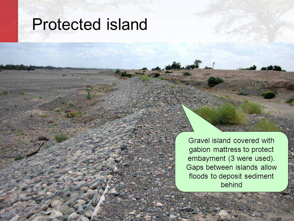 Protected island Gravel island covered with gabion mattress to protect embayment (3 were used). Gaps between islands allow floods to deposit sediment
