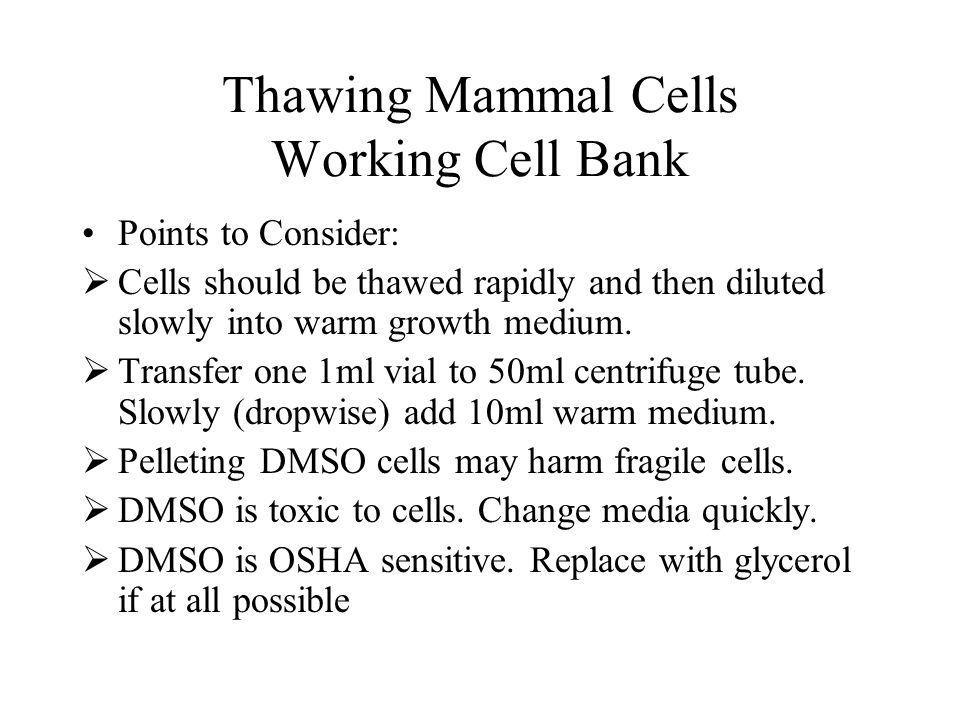 Thawing Mammal Cells Working Cell Bank Points to Consider: Cells should be thawed rapidly and then diluted slowly into warm growth medium. Transfer on